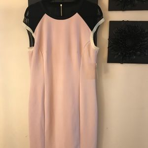 ❤️ Host Pick! Blush & black sheath dress with mesh